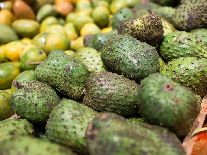 What is Soursop – Health Benefits and Nutrition Facts