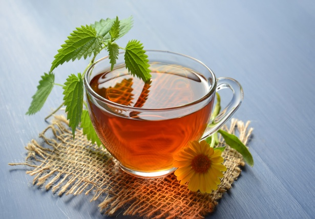Health Benefits of Green Tea in the Morning