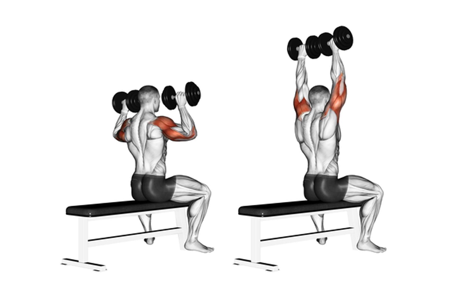 10 Shoulder Workouts For Beginners